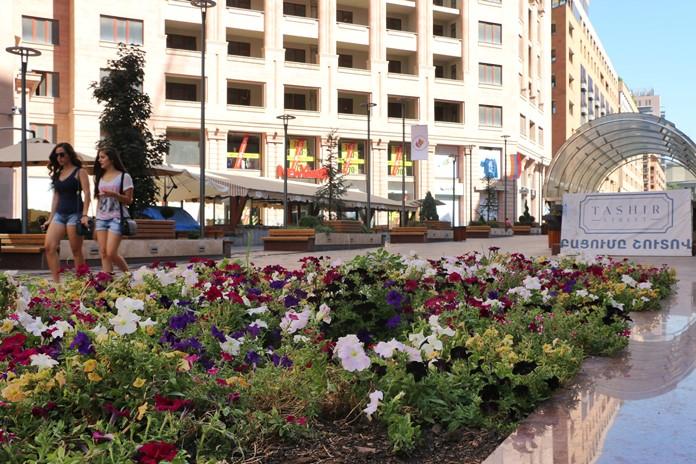 Tashir Caddesi, Erivan