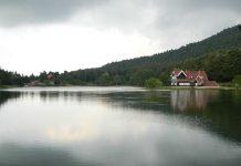 Haftasonu gezileri kapsamında gidebileceğiniz şehir: Abant, Bolu