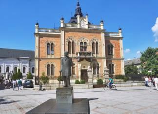 Piskoposun Sarayı, Novi Sad
